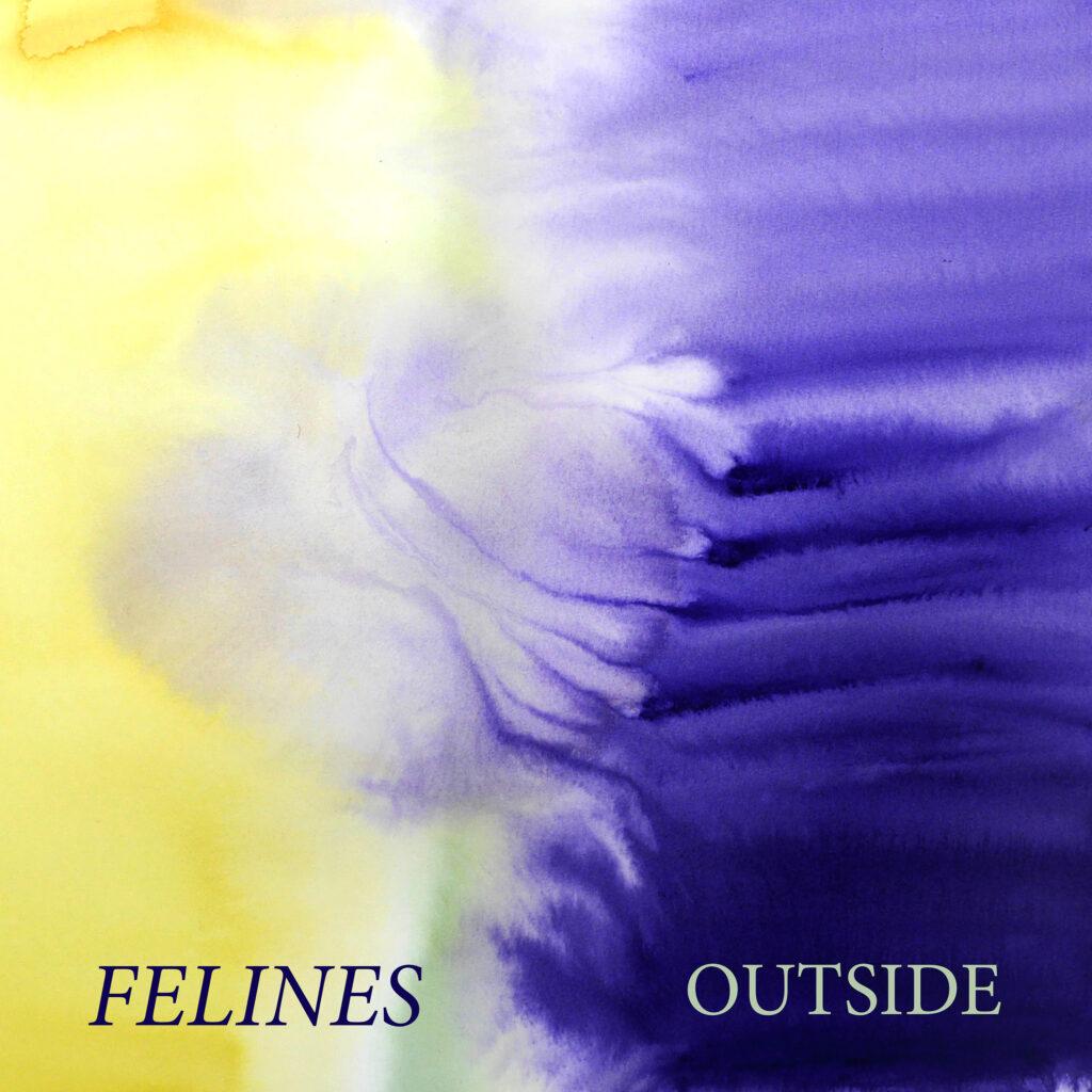 Felines – Outside